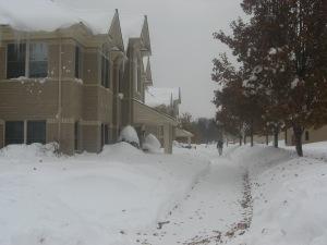 blizzard Hilbert 054